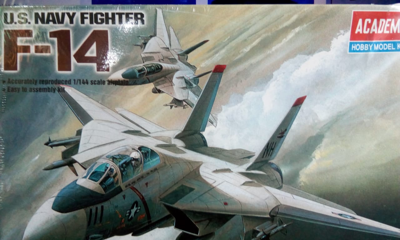 F-14 Aca